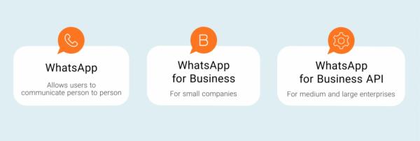 whatsapp ekosysteemin erittely